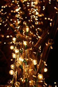 京都ロームROHMクリスマスイルミネーション夜景