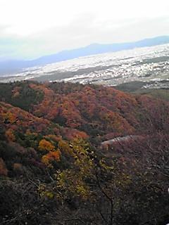 京都西山の紅葉