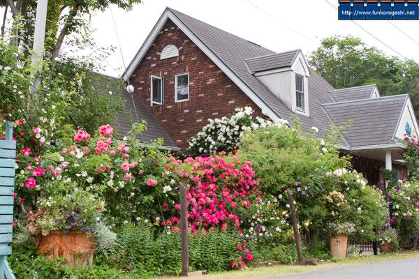 Le Jardin Secret ルジャルダンサクレ 秘密の花園