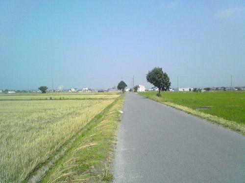 バイク屋へ行く途中の道