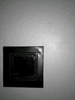 20060120_105091.jpg