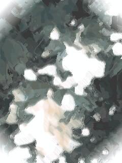 20070430_330613.jpg