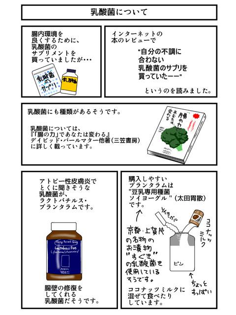 レクチンフリー24:乳酸菌についてのイラスト