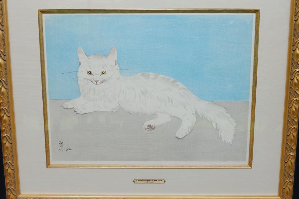 白いネコ.jpg