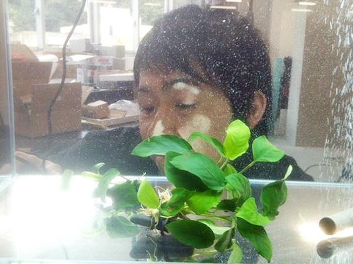 20101111_704354.jpg