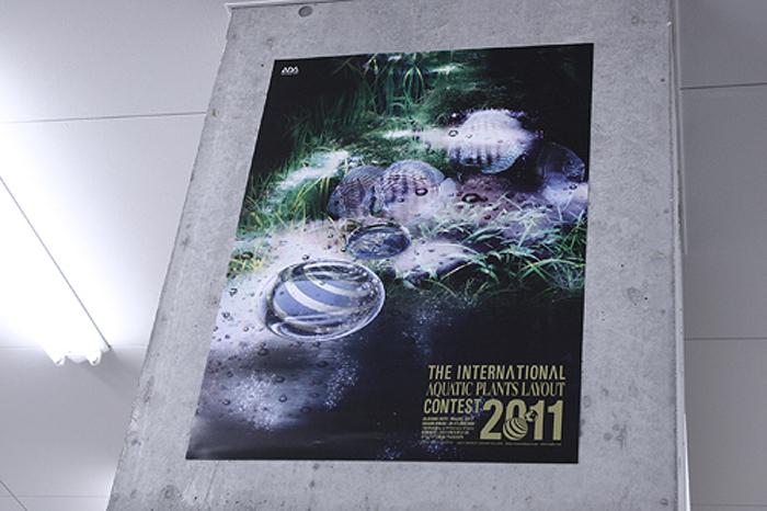 20110106_764581.jpg