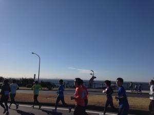 マリンマラソン17