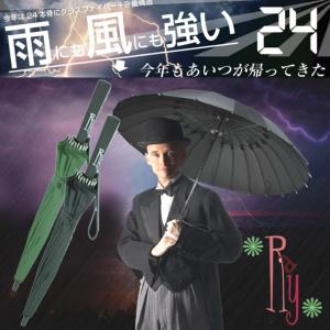 24本傘タイフーンRAY