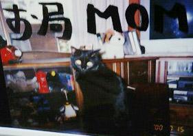 momo10