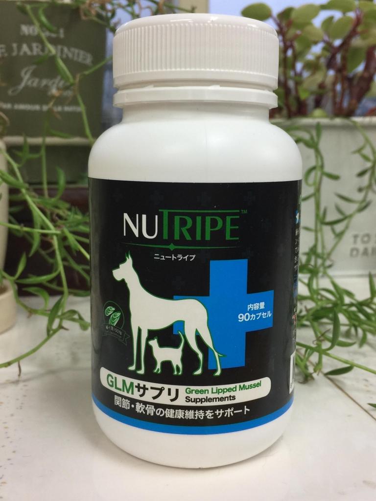 犬のサプリメント「GLMサプリ」緑イ貝100%使用