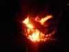 お寺の篝火