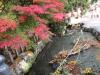 龍の口からの秋色
