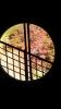 丸窓の絵画