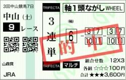 201000417_山吹賞01