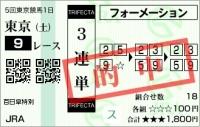 20111105_百日草特別01