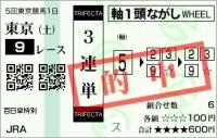 20111105_百日草特別02