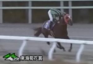 20131115_東海菊花賞02