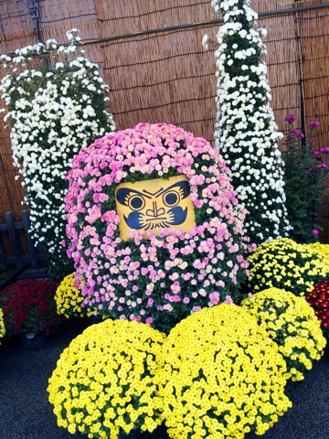 湯島天神 菊まつり