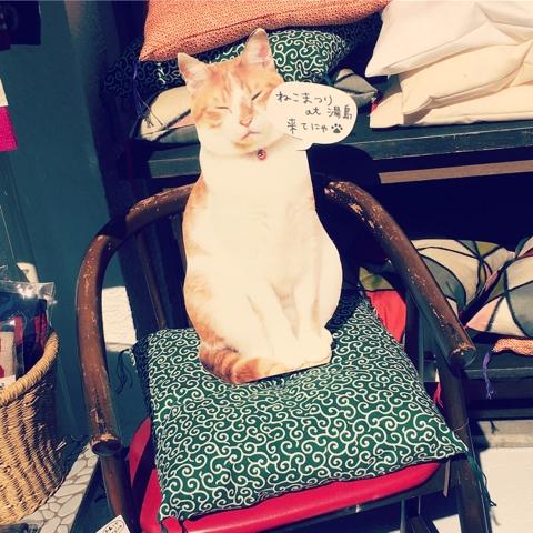 座布団 猫用 唐草