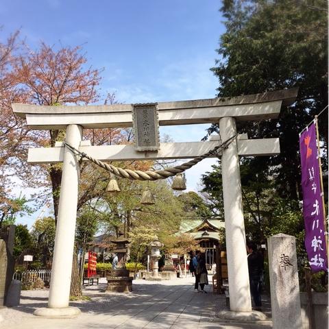 氷川神社 川口