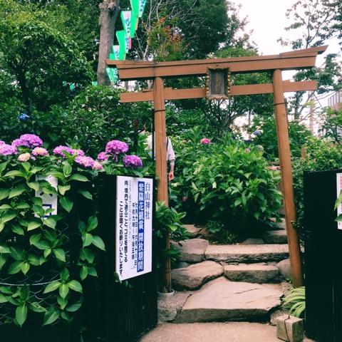 白山神社 富士塚