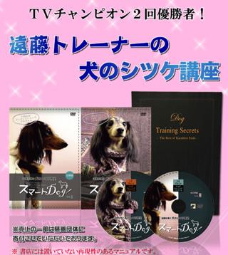 遠藤和博の愛犬のしつけ法公式サイト