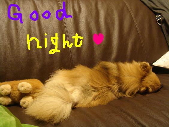おやすみね