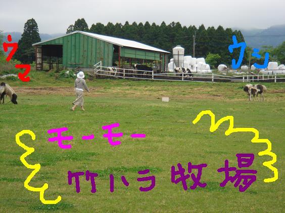 モーモ竹原牧場