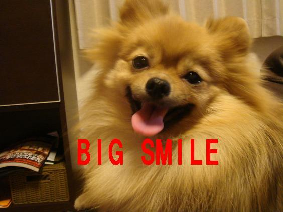 BIG SMIE