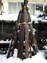 飯山の雪囲い1
