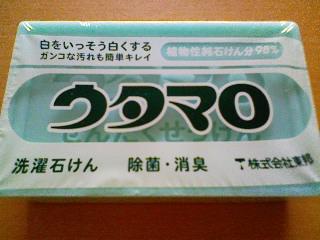 NEC_3527.jpg