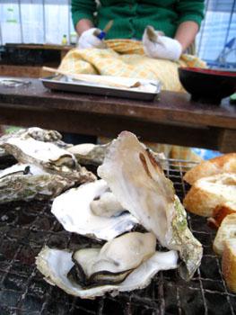 最後の牡蠣。。。来年まで