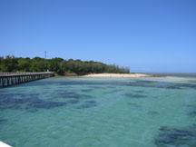 グリーン島 その2