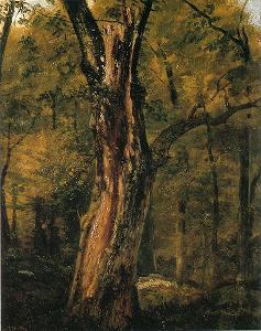 テオドール・ルソーの画像 p1_20