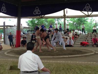 わんぱく相撲兵庫7