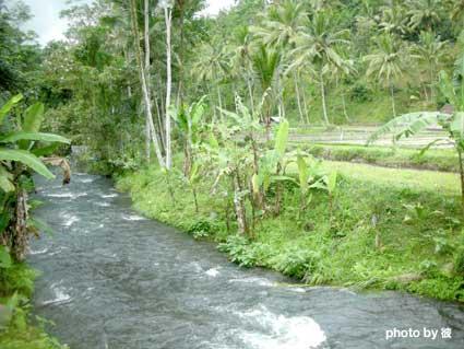 トラワジャ川の上流