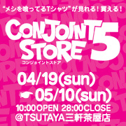 CONJOINT STORE5