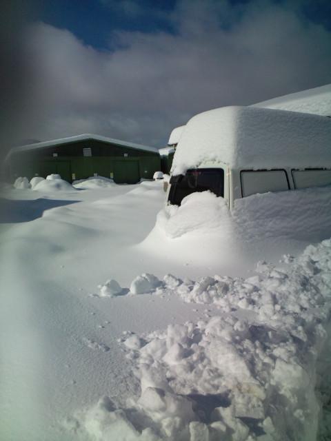 特電 大雪