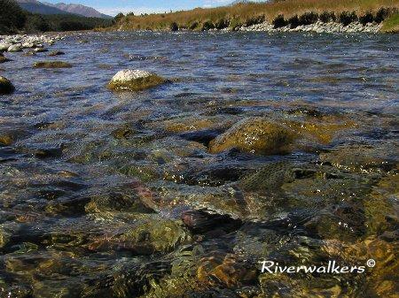 Mararoa River