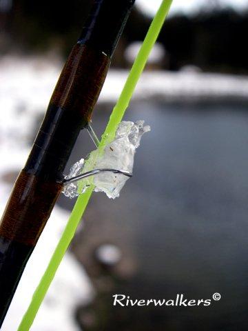 ガイド凍結