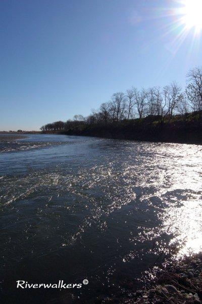 12月の利根川水系