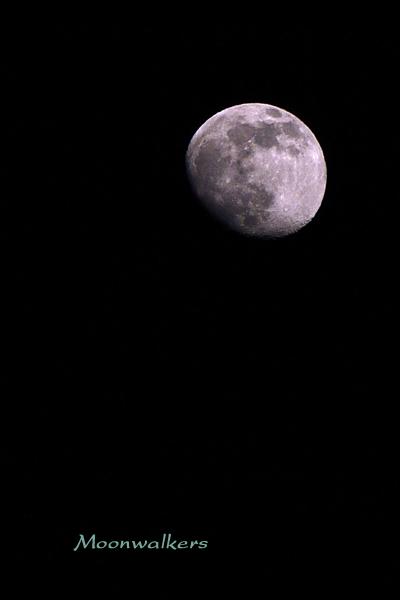 月齢 12.4(中潮)