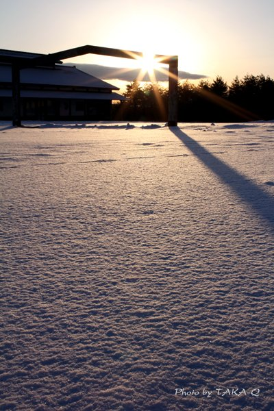凍てつく朝
