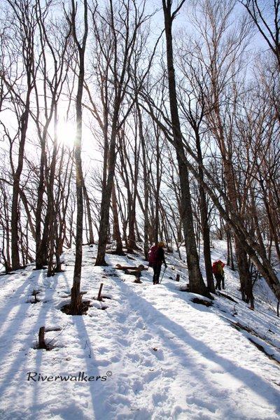 雪中トレール