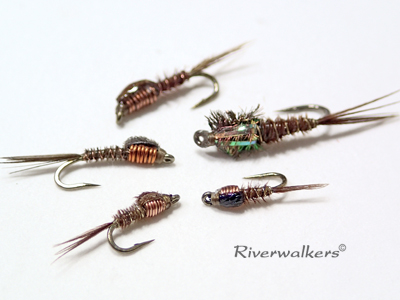 Pheasant Tail Nymphs