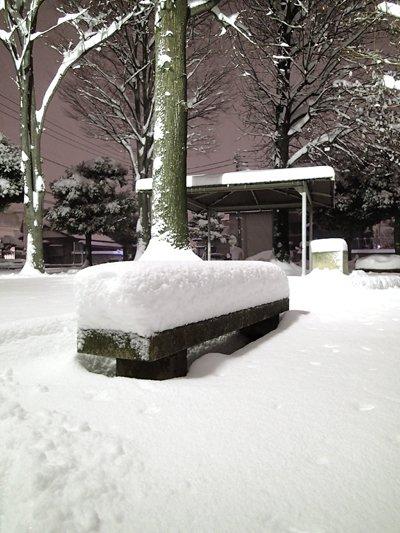 積雪深20cm超
