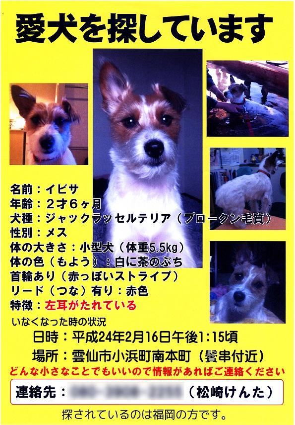 犬 縮小.jpg
