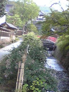 鬼屋川の萩と白字橋