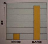 皮脂の粘度の図.jpg