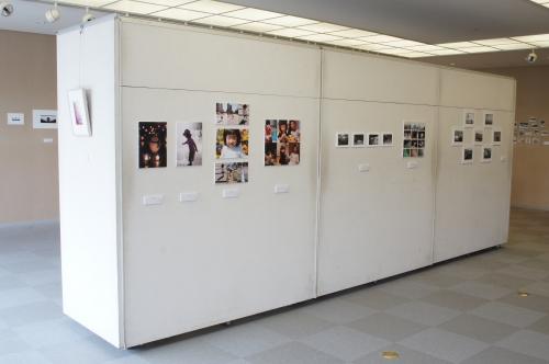 2013展示 2.JPG
